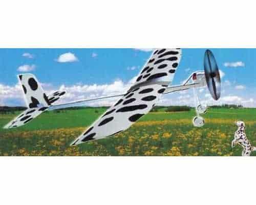 Dalmatien vol libre (WAS06001)