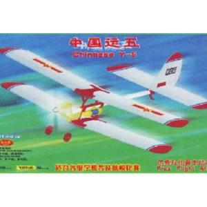 Y-5 vol libre (WAS06005)