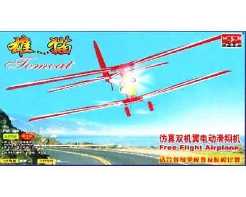 Tomcat vol libre (WAS06008)