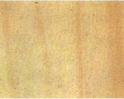 Baguette peuplier 15 x 15 mm L 1m (3111515)